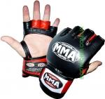 MMA - 006 KATAME